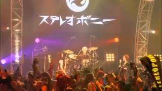 STEREOPONY BEST of STEREOPONY —Final Live— Hitohira no Hanabira (En...