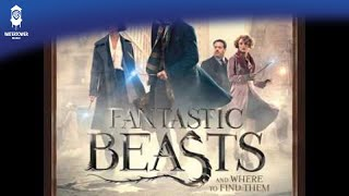 Offiical Debut - Tina Takes Newt In / Macusa Headquarters - Fantastic Beasts and Where to Find Them