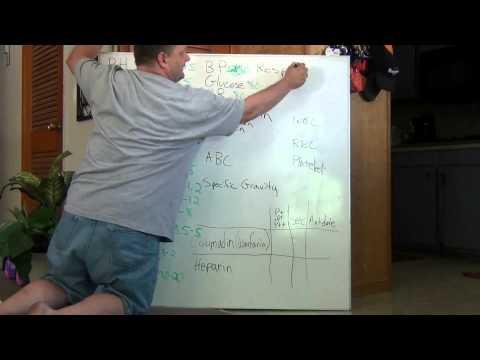 Видео Norms values and beliefs essay