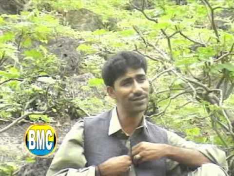 Mana Sabza | Shah Jaan Dawoodi | Vol 12 | Balochi Song | Balochi World