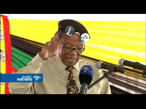 Mangosuthu Buthelezi says vote of no confidence won't solve SA's problems