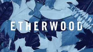 Etherwood - Light My Way Home (feat. Eva Lazarus)