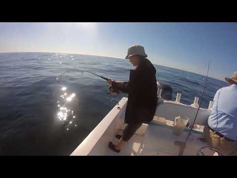 Hot Spots Fishing Charters Pensacola Inshore and Offshore Fishing