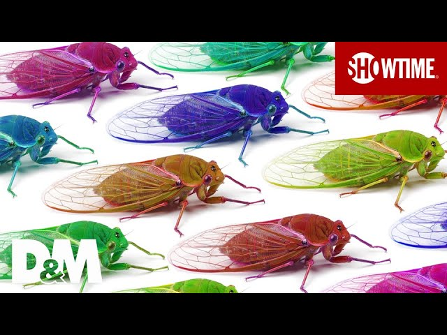 Trillions of Cicadas Emerging from 17-Year Slumber | DESUS & MERO | SHOWTIME