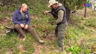 Как Путин в тайге отпуск проводил 2019 Видео с Похода президента