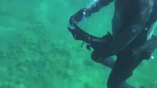 подводный мир байкала видео
