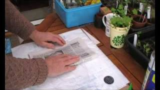 How to make inexpensive paper seed pots out of newspaper