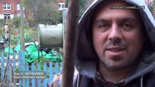 Herbs & Frost | November (ep33/y2) | Sean's Allotment Garden
