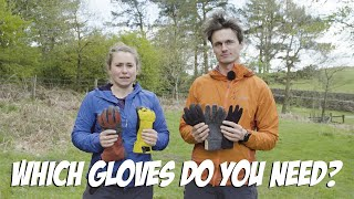 Which Gloves Do You Need?