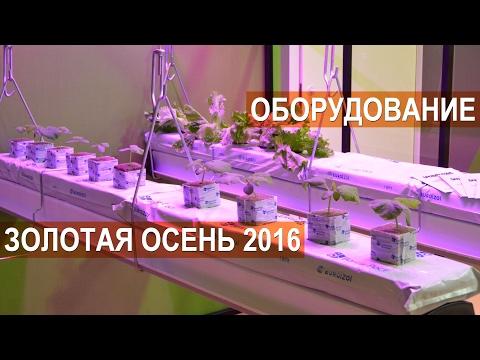 Спецтехника в Москве продажа с фото купить спецтехнику