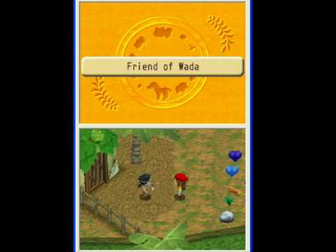 Harvest Moon: Island Of Happiness - Unlocking The Tower