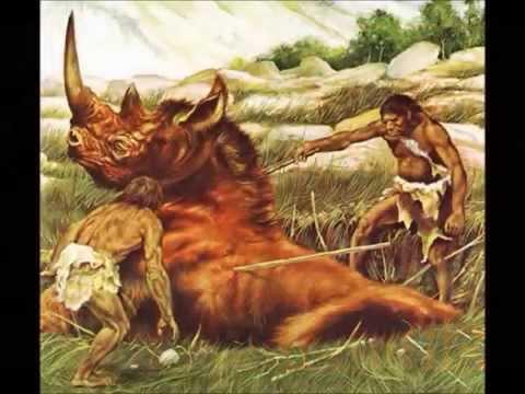 prehistoria (paleolítico-mesolítico-neolítico-edad de los metales)