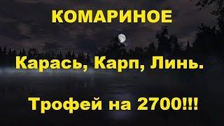 Російська Рибалка 4. |Знову на Комариное| |Трофейний Карась на 2695 гр.| |КОРОП|
