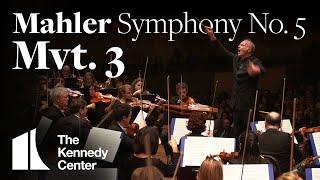 Mahler - Symphony No. 5, Mvt 3 | National Symphony Orchestra (excerpt)