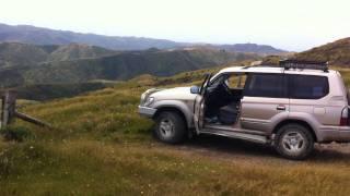 On tour with Kiwi Coastal Tours
