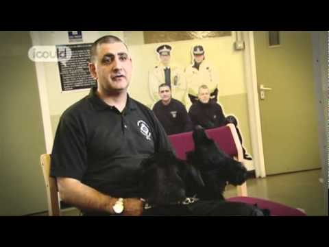 Career Advice on becoming a Drug Dog Handler by Alan N (Full Version)