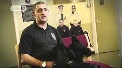 Career Advice on becoming a Drug Dog Handler by Alan N (Full Version)