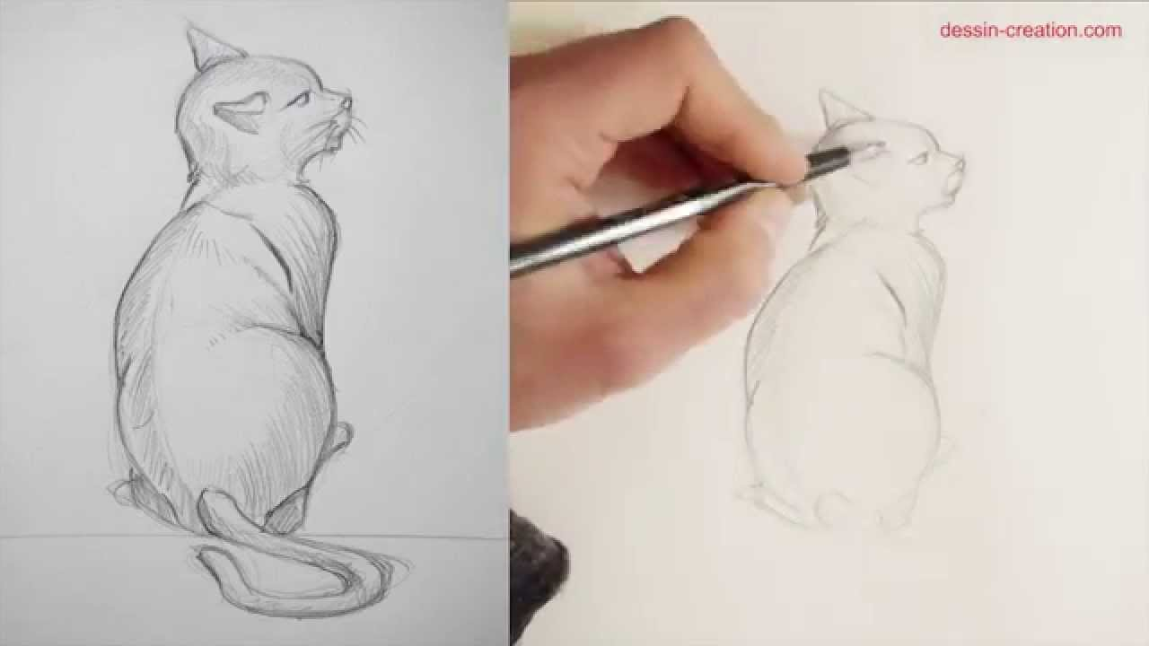 Comment dessiner un chat tutoriel episode1 youtube - Comment dessiner schtroumpfette ...