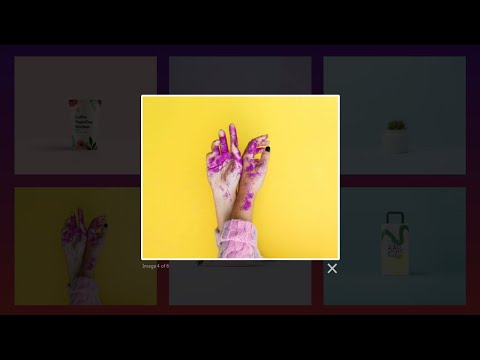 How To Create Image Gallery Using HTML, CSS And Javascript | Lightbox Gallery