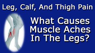 Leg Calf And Thigh Pain What Causes Muscle Aches In Legs