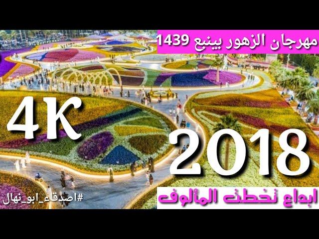 ?????? ?????? ???????? ????? | Flower Festival and Gardens in Yanbu 2018