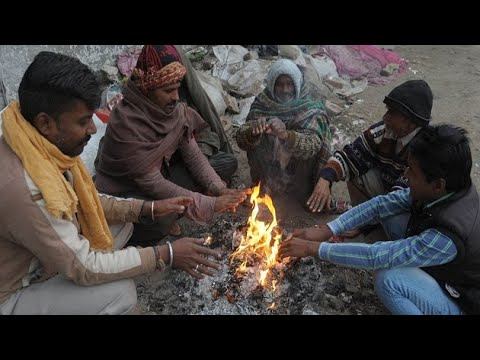 North India's Cold Wave Continue To Disrupt Normal Life