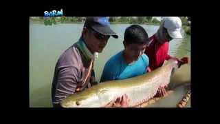 Doc Nielsen Donato encounters Thailand