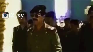 جديد يا ستار (صدام حسين)