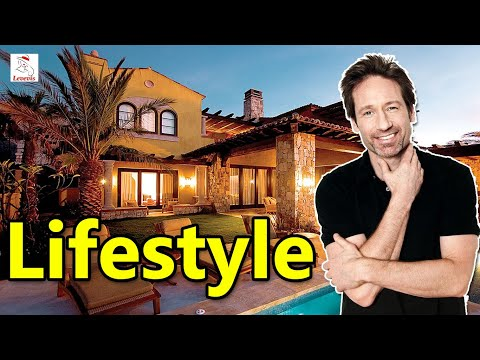 David Duchovny Income, Cars, Houses, Lifestyle, Net Worth And Biography - 2020 | Levevis