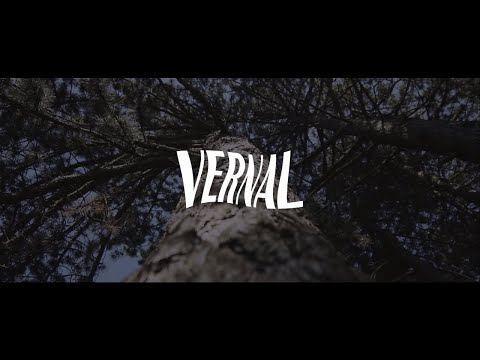 The Vernal - Flowers (Official Music Video)