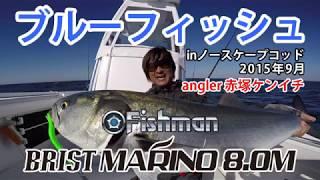 ブルーフィッシュ(BLUE FISH )のボートゲーム in アメリカ ケープコッド