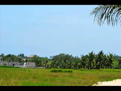 Canggu land for sale in Bali - TJCG037.wmv
