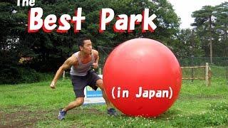 The best park in Japan (Shinrinkoen / 森林公園 in Saitama)