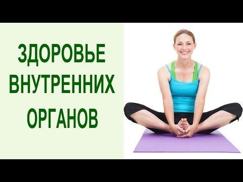 Йога комплекс для укрепления здоровья внутренних органов. Йога и система оздоровления Yogalife