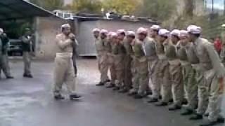 Kurdish Traditional Dance (Hjrok)