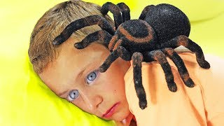 Itsy Bitsy Spider, Johny Fruit and More Nursery Rhymes Kids Songs by Chu Chu Ua