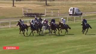 Vidéo de la course PMU PRIX FELIX LABAT