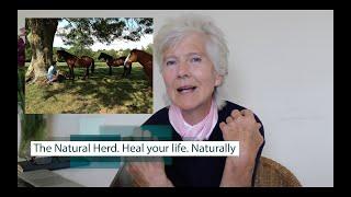 Hopethruhorses Course - Heal your life...naturally