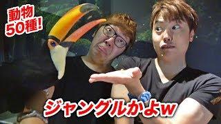 この動画は「オービィ横浜」とのタイアップです。 みなとみらいで動物と...
