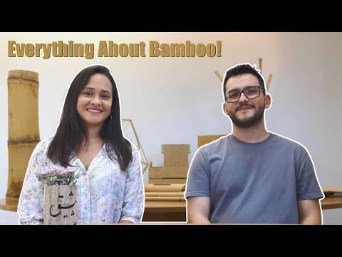 universe-of-bamboo,-everything-about-bamboo-|-tudo-de-bambu!