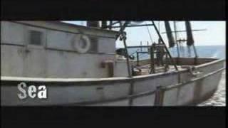 Forrest Gump horror trailer