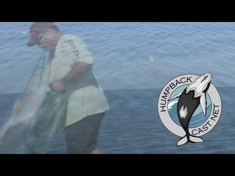 How To Catch Bait On The Flats | Humpback Cast Nets