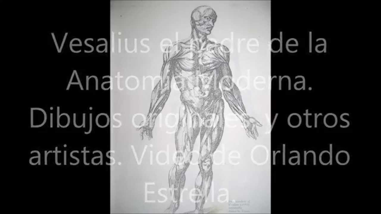 Vesalius Padre de la Anatomía Moderna. Y otros autores. - YouTube