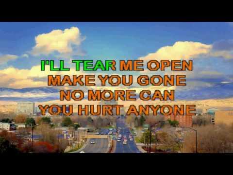 Karaoke Metallica - Until It's Sleep