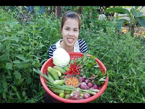 Awesome Cooking Pork With Fresh Vegetable Recipe-Cooking Pork Recipe-Village Food Factory-Asian Food