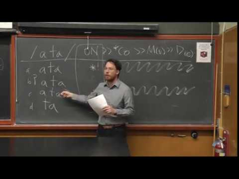 Linguistics Lecture - UC Berkeley - Introduction to Optimality Theory in Phonology