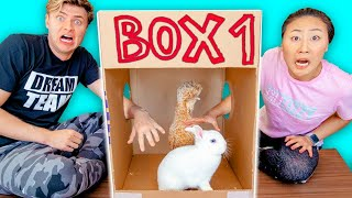 WHAT\'S IN THE BOX CHALLENGE with LIVE ANIMALS!!