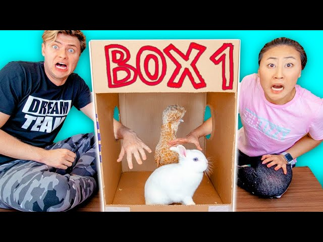 WHATS IN THE BOX CHALLENGE with LIVE ANIMALS!!