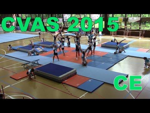 Pomy - CVAS 2015 - CE