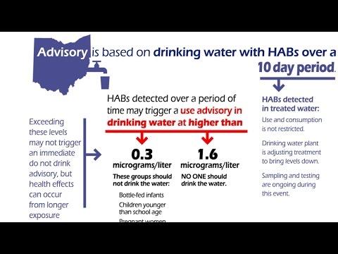 Ohio EPA Introduces New Harmful Algal Bloom Advisory System
